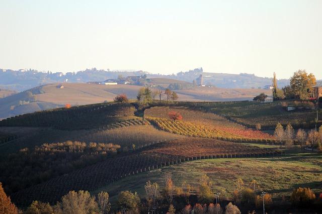Barolo-wijnstreek